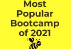 StockBee - Bootcamp (2021)